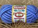 New Bernat Sox Yarn 100g