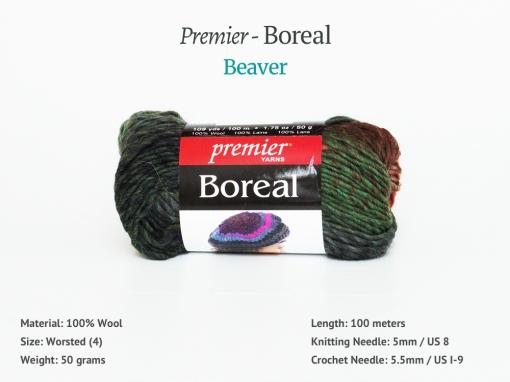 Boreal_Beaver