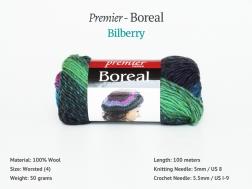 Boreal_Bilberry