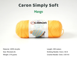 CSS_Mango