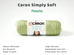 CSS_Pistachio